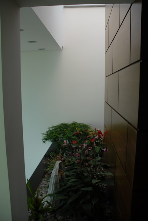 Casa el Hatillo: Jardines de estilo minimalista por Arquitecto Juan Pablo Fernandes