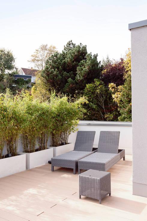 Dachterrasse mit Blick auf die Frankfurter Skyline :  Terrasse von in_design architektur