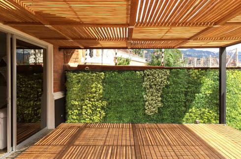 FOTOGRAFÍA INTERIOR DESDE ASADOR:  de estilo  por ALSE Taller de Arquitectura y Diseño