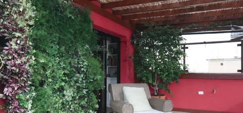 Cobertura Higienópolis: Jardins tropicais por CALI PAISAGISMO