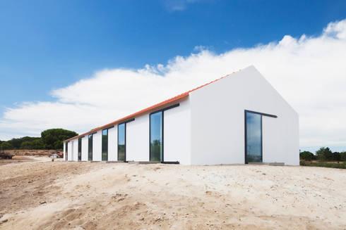 Sítio da Lezíria: Casas modernas por Atelier Data Lda