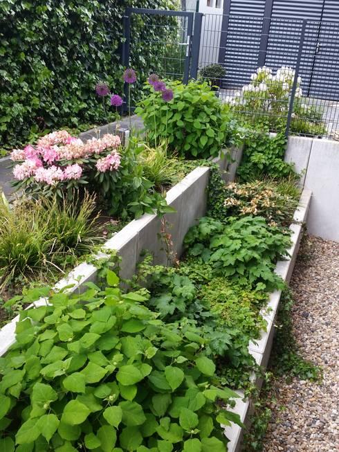 Irene Alberts Landschaftsarchitektin의  정원