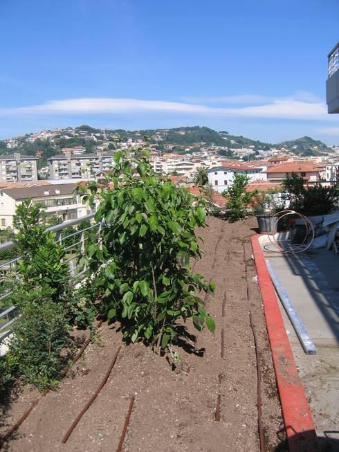 Projekty,   zaprojektowane przez Febo Garden landscape designers