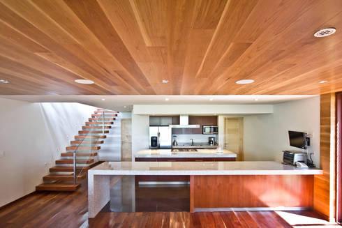 La casa en el bosque: Salas de estilo moderno por EMA Espacio Multicultural de Arquitectura
