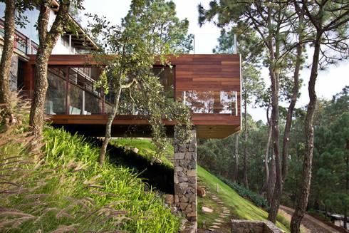 La casa en el bosque: Casas de estilo moderno por EMA Espacio Multicultural de Arquitectura
