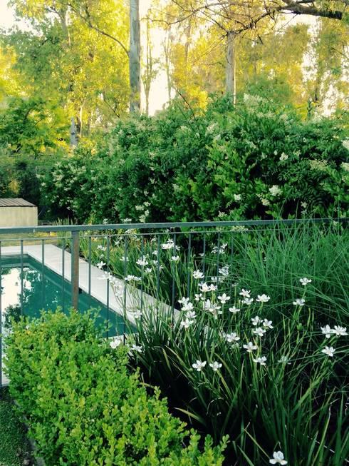 espacios que deslumbran: Jardines de estilo  por BAIRES GREEN