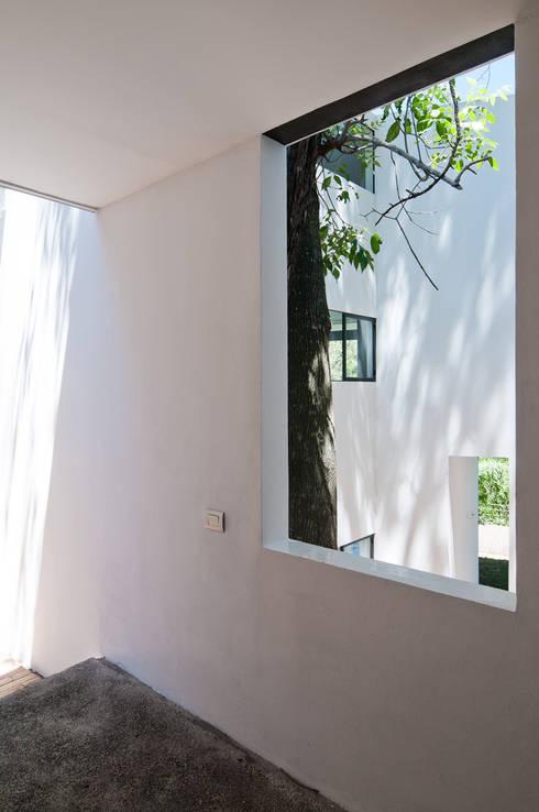 Casa La Lagartija: Ventanas de estilo  por alexandro velázquez