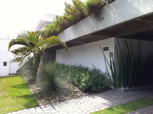 Jardim Tropical no Morumbi : Jardins tropicais por REJANE HEIDEN PAISAGISMO