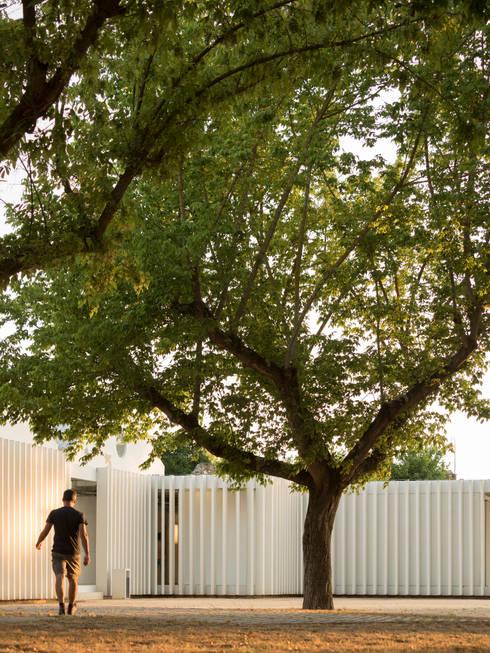 Camping Abrantes: Hotéis  por atelier Rua - Arquitectos