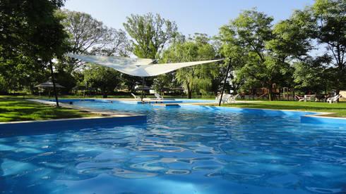 Solares de la Laguna – PISCINAS: Piletas de estilo moderno por D'ODORICO OFICINA DE ARQUITECTURA