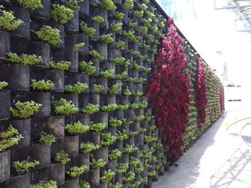FLORESA BARDA DE PRESENTACION DE CFE: Jardines de estilo moderno por ENFOQUE CONSTRUCTIVO