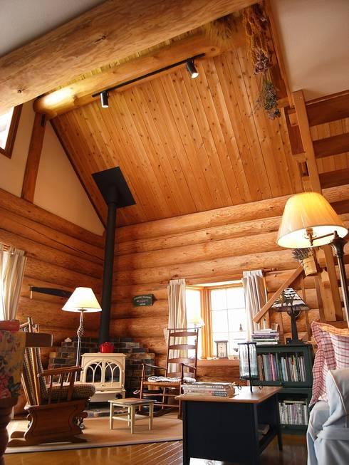 丸太小屋の照明: Cottage Style / コテージスタイルが手掛けたリビングです。