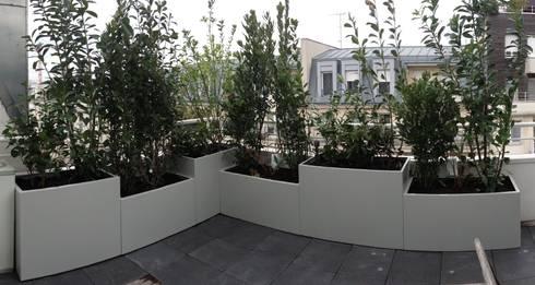 Jardinières sur mesure en métal Thermolaqué par Fence Paris | homify