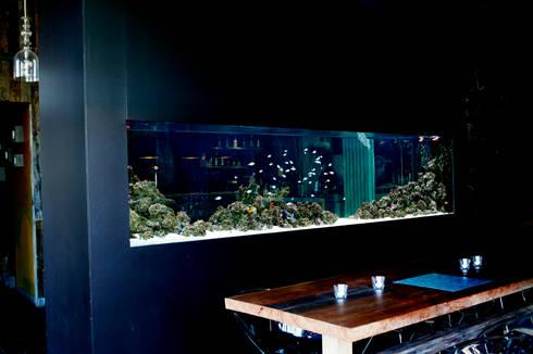 ADn saltwater aquarium at restaurant Lazuli - Estórias do Mar: Espaços de restauração  por ADn Aquarium Design