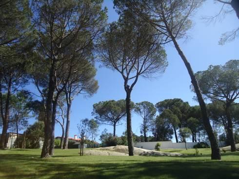 jardim privado: Janelas   por Raquel Frias - arquitectura paisagista