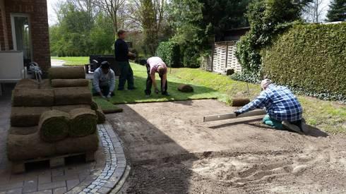 Verlegung von Rollrasen: moderner Garten von Garten- und Landschaftsbau Gartenservice Schwanewede