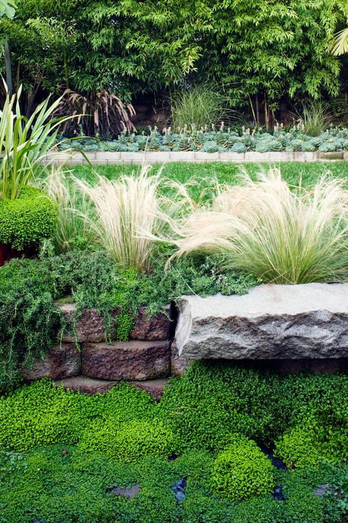 Casa em Sao Francisco - Potrero Hill: Jardins  por Antonio Martins Interior Design Inc