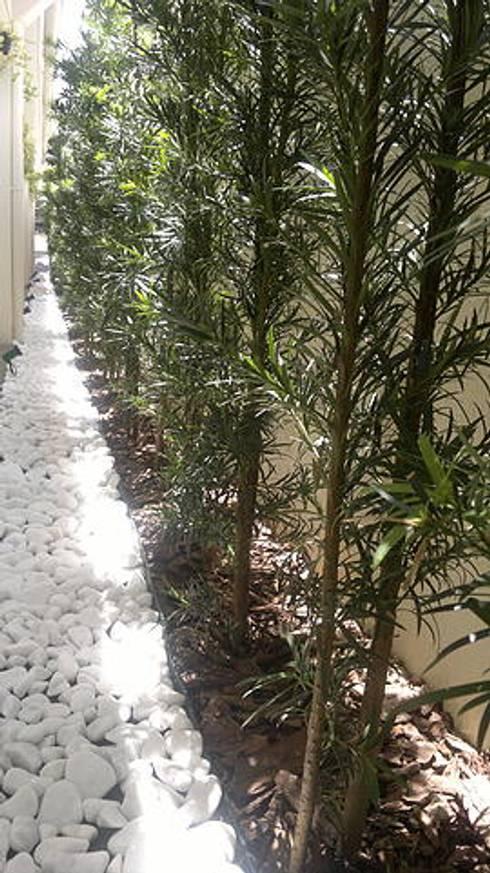 Canteiro lateral: Jardins tropicais por Marcos Assmar Arquitetura   Paisagismo