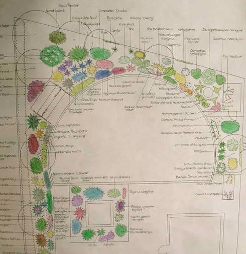 Planting design:   by Jane Harries Garden Designs