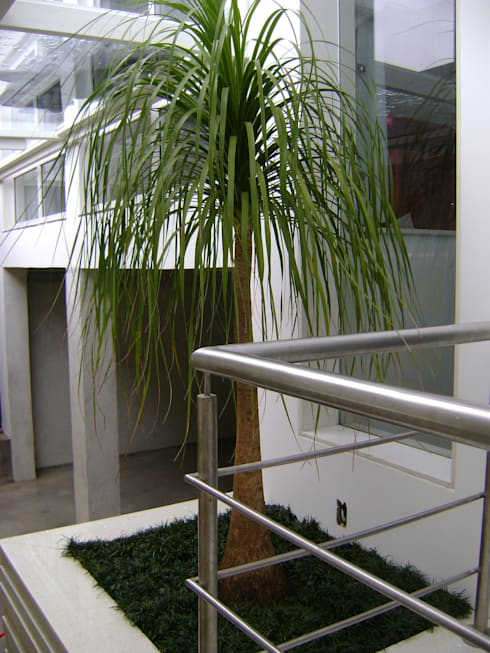 PAISAGISMO: JARDINS BY MC3: Jardins minimalistas por MC3 Arquitetura . Paisagismo . Interiores