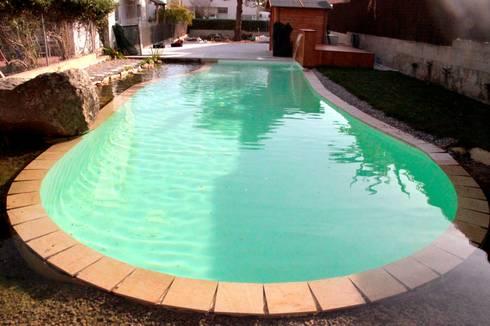 Bio piscina de alijardin homify for Bio piscina