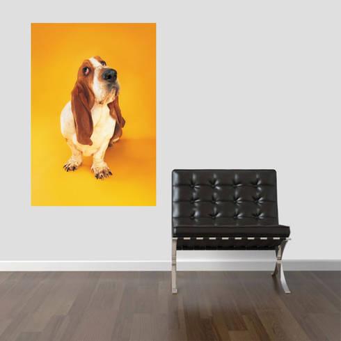 Basset Hound III: Sala de estar  por Kriativus.net - Impressão Fotográfica Online