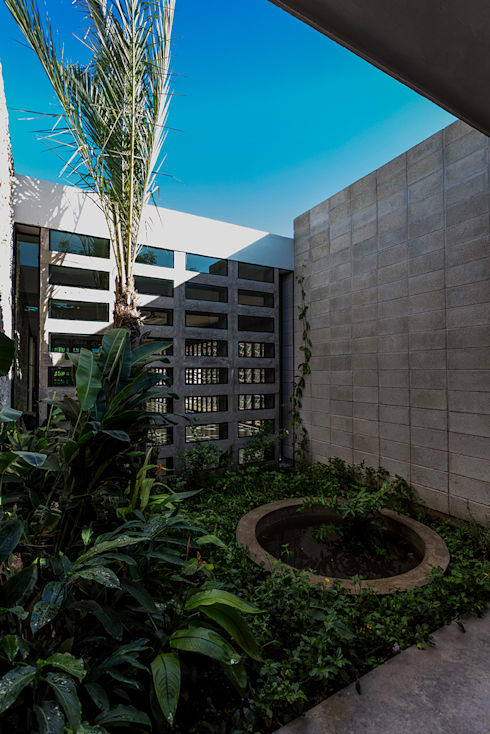 Jardín Interior: Jardines de estilo  por Taller Estilo Arquitectura