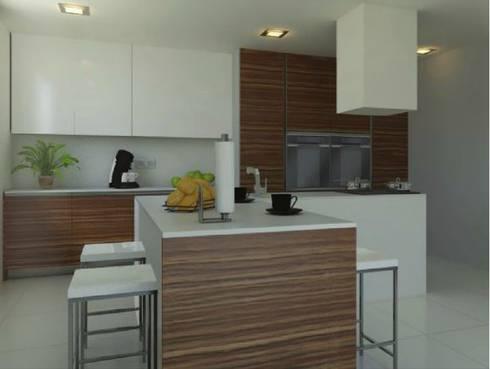 Projectos de cozinhas:   por Sonia Triginho