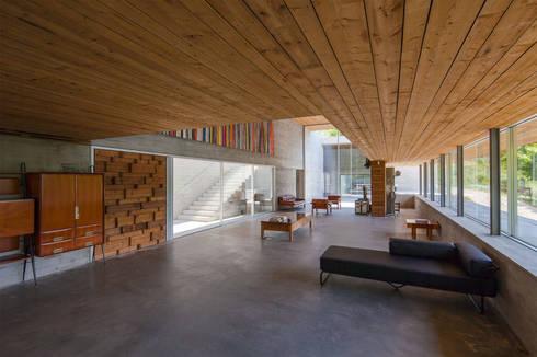 Casa do Gerês: Salas de estar modernas por Carvalho Araújo