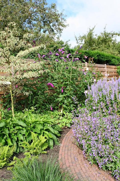 Cornus controversa 'Variegata', prachtige boom voor kleine tuin:  Tuin door Carla Wilhelm