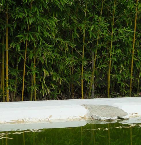 Recuperação de tanque de rega: Jardins ecléticos por Atelier Jardins do Sul