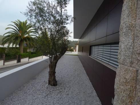 Moradia em Oliveira de Azeméis: Casas modernas por Paulo Valente lda