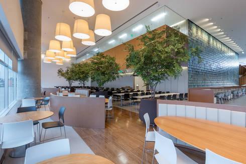 Árvores de Avencão   Restaurante corporativo: Paisagismo de interior  por Svetlana Plantas Preservadas