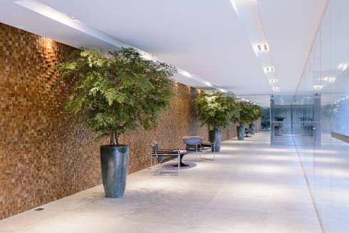 Árvores de Avencão   Hall de entrada : Paisagismo de interior  por Svetlana Plantas Preservadas
