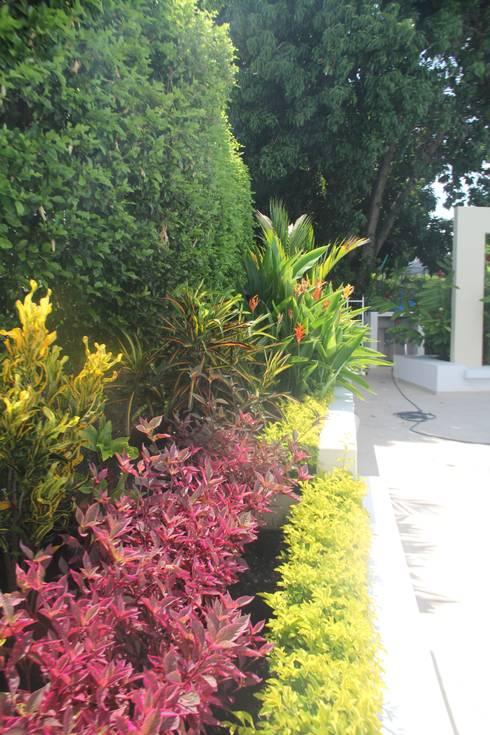 Garden by Camilo Pulido Arquitectos