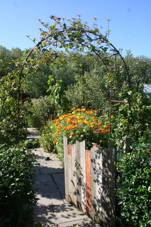 Carla Wilhelm: kırsal tarz tarz Bahçe