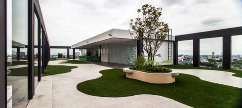 Colegio de la Imagen Publica: Jardines de estilo moderno por Serrano Monjaraz Arquitectos