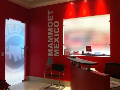 MAMMOET: Estudios y oficinas de estilo moderno por Liferoom