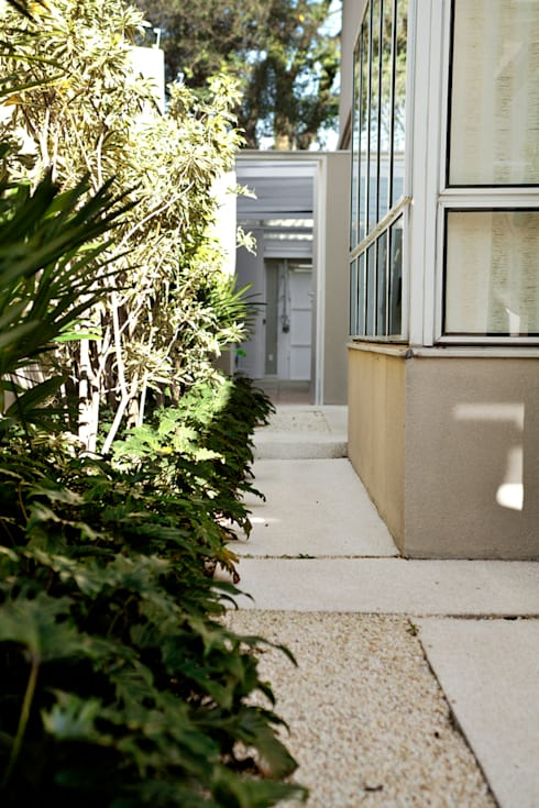 Сады в . Автор – Camila Vicari Arquitetura da Paisagem