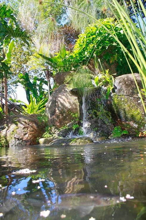 RESIDÊNCIA FM: Jardins rústicos por MADUEÑO ARQUITETURA & ENGENHARIA