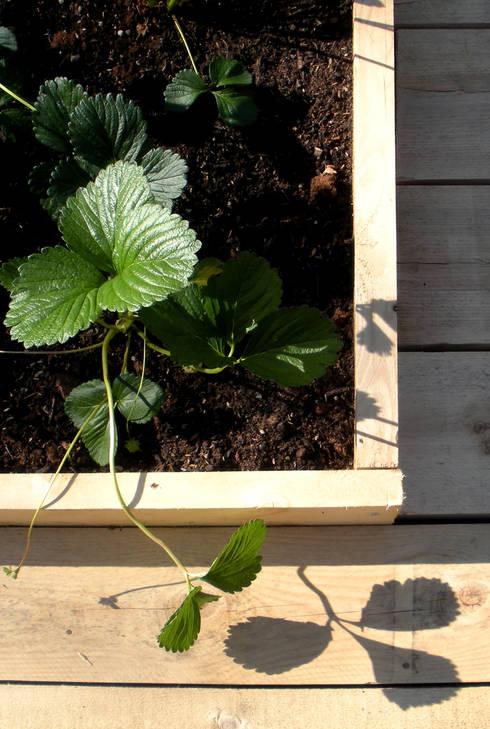 Il giardino comunitario: Giardino in stile in stile Eclettico di Atelier delle Verdure