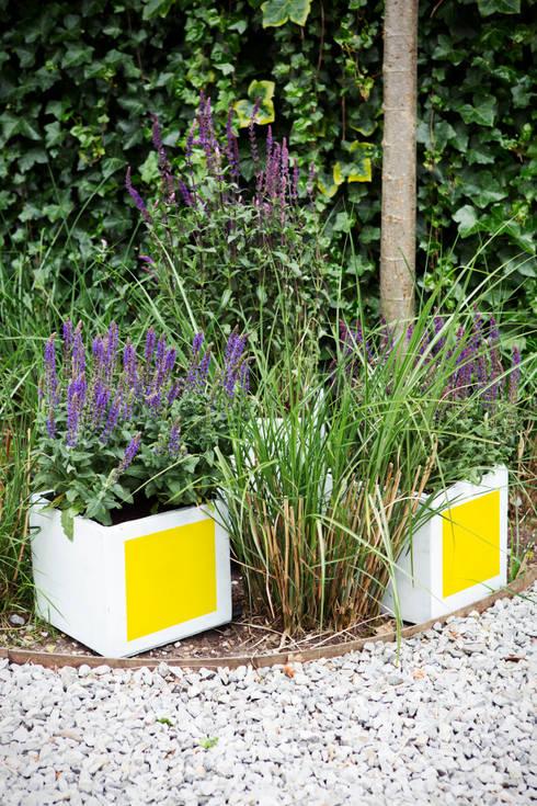 Frühlingsgarten: moderner Garten von Pflanzenfreude.de