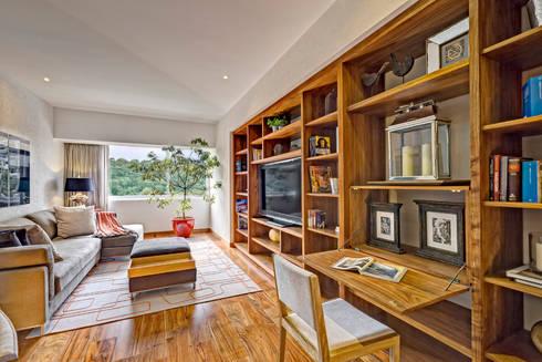 Departamento Parque Reforma : Salas multimedia de estilo moderno por Lopez Duplan Arquitectos