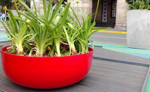 Macetero Cuernavaca: Jardín de estilo  por Diseño Neko