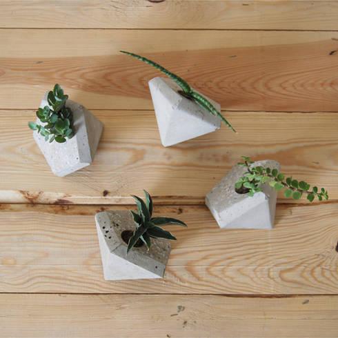 Macetas Edro disponibles en Greenella: Salas/Recibidores de estilo minimalista por Greenella