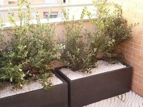 Apartamento Porto: Terraços  por Kohde