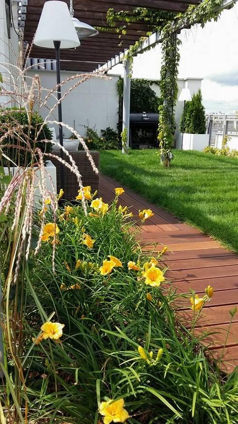 roslinnosc na tarasie: styl , w kategorii Ogród zaprojektowany przez Ogrodowa Sceneria