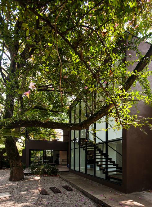 Projeto Alto de Pinheiros - SP: Jardins modernos por Alice Martins Flávio Butti