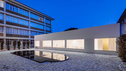Fachada e relação com espaço exterior: Casas minimalistas por Site Specific