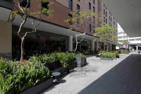Nuevo Sur : Jardines de estilo moderno por Grow Arquitectos